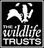 WT_Logo_2011